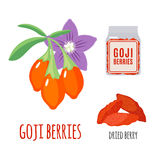 Superfood goji berries set in flat style. Royalty Free Stock Photography