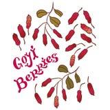Superfood goji berries Stock Photos