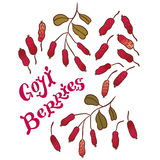 Superfood goji berries Royalty Free Stock Photography