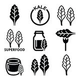 Superfood - kale leaves  icons set Royalty Free Stock Photo