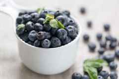 Superfood orgánico antioxidante del arándano en un concepto del cuenco para la consumición y la nutrición sanas fotografía de archivo libre de regalías