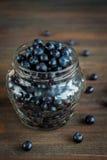 Superfood orgânico antioxidante do mirtilo em um frasco Imagem de Stock Royalty Free