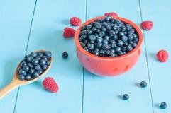 Superfood orgânico antioxidante do mirtilo em uma bacia Foto de Stock