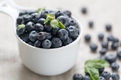 Superfood organico antiossidante del mirtillo in un concetto della ciotola per il cibo e la nutrizione sani fotografia stock libera da diritti