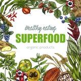 Superfood, realistisches Skizzenrahmendesign lizenzfreie abbildung