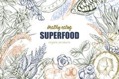 Superfood, realistisches Skizzenrahmendesign stock abbildung