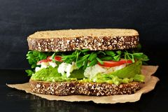 Superfood sandwich with avocado, egg whites, radish and pea shoots Stock Photos