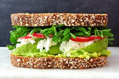 Superfood sandwich on marble against a black background. Superfood sandwich with whole grain bread, avocado, egg whites, radishes and pea shoots on marble Royalty Free Stock Image