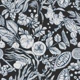 Superfood. Seamless botanical pattern. On black background, Realistic vector sketch illustration Stock Images