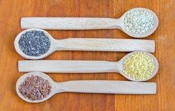 Superfood, sementes úteis imagem de stock