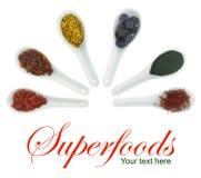 Superfoods en cucharas de la porcelana imagen de archivo libre de regalías