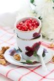 superfoods för pomegranate för makro en för cholesterol kan tätt lägre sköt frö upp Royaltyfria Bilder