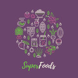 Superfoods line vector concept. Acai, cocoa, goji, guarana, spirulina, coconut, quinoa, camu camu Organic superfoods for health and diet. Detox and weightloss royalty free illustration