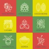 Superfoods linii ikony ustawiać Obrazy Stock