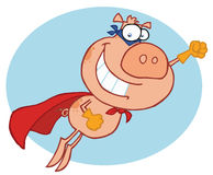 Superheldschwein Stockbild