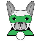 Superhero symbol  as  a French bulldog  character in black, gray, green with a mask Royalty Free Stock Image