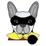 Superhero symbol  as  a French bulldog  character in red, green  and yellow covered with a cape and mask covering face. On white background Stock Photo