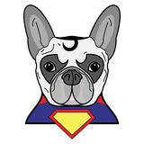 Superhero symbol  as  a French bulldog  character in red, yellow, blue with a cape and yellow diamond symbol. On white background Royalty Free Stock Photo