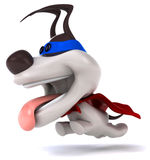 superhund Arkivfoton