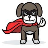 Superhund Lizenzfreie Stockfotos