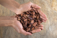 Superior view of handful of cacao beans Royalty Free Stock Photos