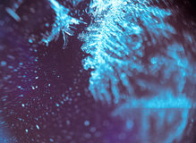 Supermacro of Frost Pattern Stock Images
