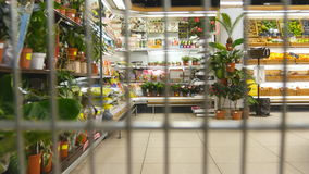 Supermarket cart riding throuth shop. Camera inside trolley going through grocery store. stock video footage