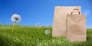 supermarket för påsegräsdokument med olika förslag Royaltyfri Foto