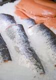 In supermarket fresh raw fish sturgeon on ice. In the supermarket fresh raw red fish sturgeon pieces on ice Royalty Free Stock Photos
