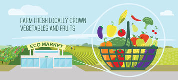 Supermarket natural products. Farmers market concept. Vector illustration Store with a basket of organic vegetables and fruits royalty free illustration
