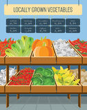 Supermarket shelves of vegetables. Shelves with vegetables in a supermarket. Vector illustration Royalty Free Stock Image