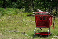 Supermarket shopping cart in the wilderness. A bright red supermarket shopping cart is contrasted by the green of the wilderness. The cart is full of old dry Royalty Free Stock Image