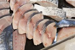 Supermarket stall with raw fish. Supermarket stall with Salomon and Coalfish Pollachius virens raw fish - fresh fish counter full with diverse - organic fish Royalty Free Stock Images