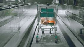 Supermarket trolley with food down the escalator to the underground parking. Supermarket trolley down the escalator to the underground parking stock footage