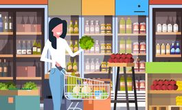 Supermarketkvinnakund med att shoppa inre för marknad för livsmedelsbutik för grönsaker för spårvagnvagn den horisontalköpande fr royaltyfri illustrationer