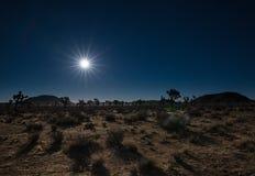 Supermoon освещая пустыню Стоковая Фотография