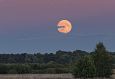 Supermoon above the forest, Europe Royalty Free Stock Photo
