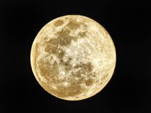 Supermoon images stock