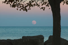 Supermoon que sube sobre el lago Michigan Foto de archivo libre de regalías