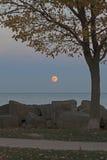 Supermoon que sube sobre el lago Michigan, vertical Imagen de archivo libre de regalías