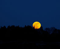 Supermoon rising Stock Images
