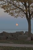 Supermoon som stiger över Lake Michigan, lodlinje Royaltyfri Bild