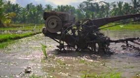 Superslowmotion сняло фермеров которые культивируют поле перед засаживать рис Поле покрыто с грязной водой акции видеоматериалы