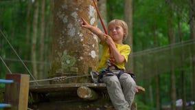Superslowmotion ha sparato di un ragazzino in un cavo di sicurezza su un itinerario in un parco di avventura della foresta Centro stock footage