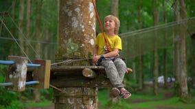 Superslowmotion ha sparato di un ragazzino in un cavo di sicurezza su un itinerario in un parco di avventura della foresta Centro archivi video