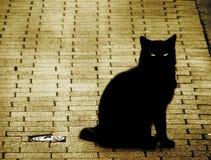 Superstición Foto de archivo