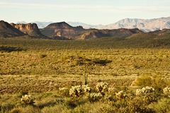 The Superstition Mountains Stock Photos