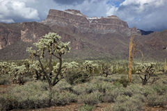 Superstition Mountains Stock Photography