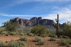 Superstition Mountains Stock Image
