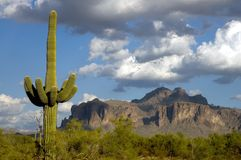 Superstition Mts.1 Stock Photo